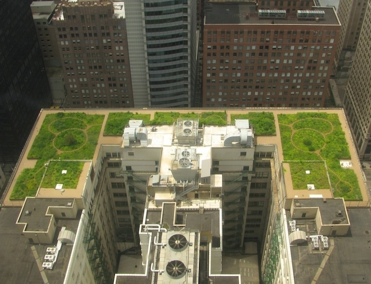 25561017 111532 ต้นไม้ 20,000 ต้น บนหลังคา City Hall เมืองชิคาโก้ ช่วยลดความร้อน เก็บน้ำฝน และให้ความสุขกับคนเมือง
