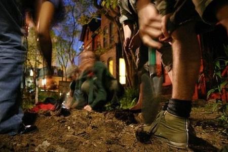 guerilla20gardeners 450x300 Guerrilla Gardener กองโจรสีเขียว