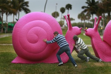 GIANT RECLECLED SNAILS หอยทากพิทักษ์สิ่งแวดล้อม 2 - Art and About Sydney