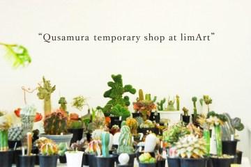 Qusamura นักจัดดอกไม้ ที่ชื่นชอบในความงามของต้นกระบองเพชร