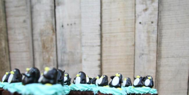 264963 394474637300399 448565190 n 650x329 Penguin Ghetto หมู่บ้านเพนกวิน อำเภอเมือง จังหวัดเชียงใหม่