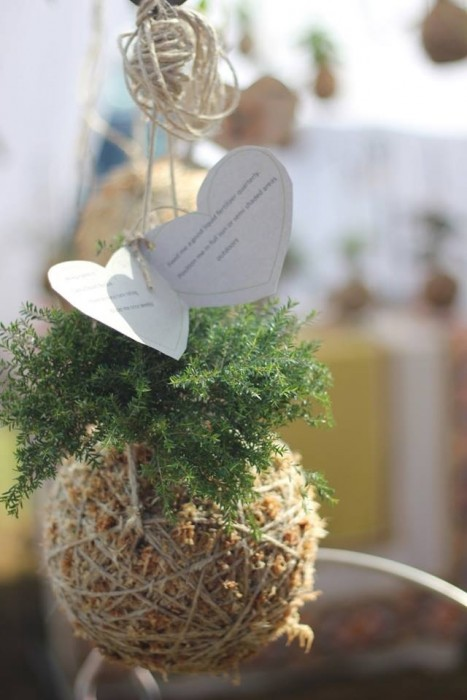 DIY string garden..สวนแขวน จากกระถางเชือก และไหมพรม 13 - hanging garden