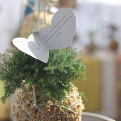 DIY string garden..สวนแขวน จากกระถางเชือก และไหมพรม 15 - hanging garden