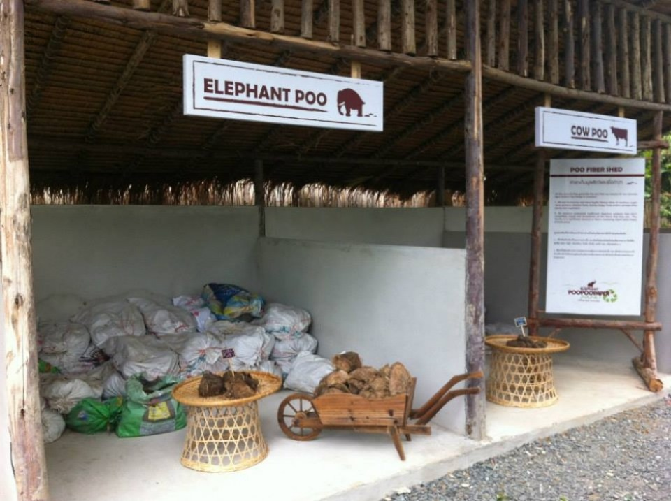 1010810 576700112371871 401471122 n ท่องเที่ยวเชิงอนุรักษ์ที่ Elephant Poopoopaper Park อ.แม่ริม จ.เชียงใหม่