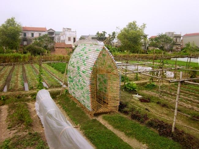 โรงอนุบาลผัก ทำจากไม้ไผ่ และขวดพลาสติก ความร่วมมือระหว่างคนในเมือง และเกษตกรในชนบท 13 - โรงอนุบาลผัก