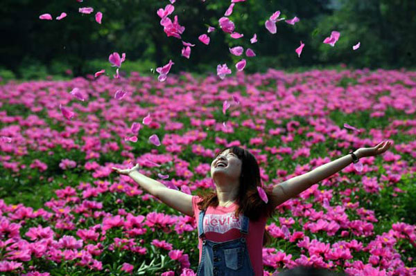 002564bc654b12bb526239 Luoyang Peony Festival เทศกาลดอกโบตั๋น