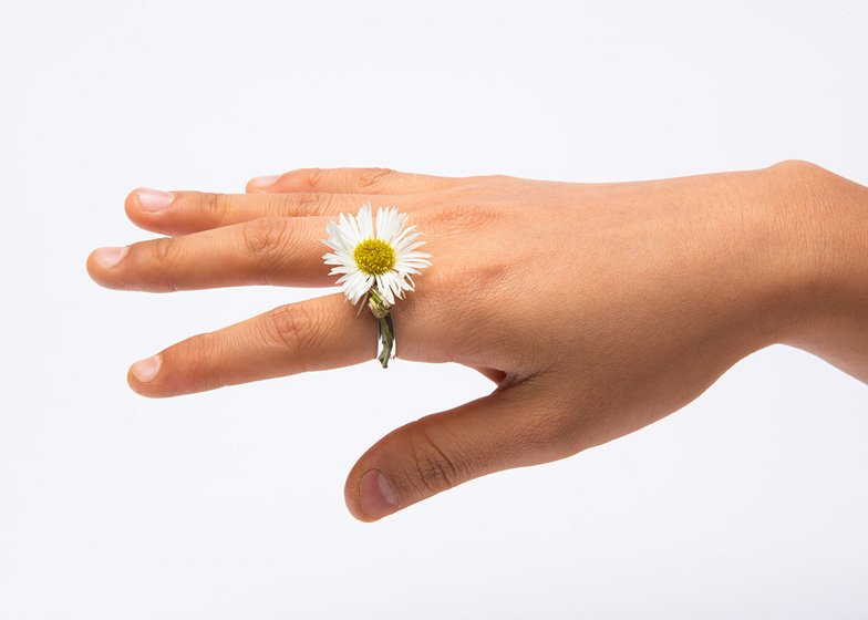 Spring-rings-by-Gahee-Kang-incorporate-flowers_dezeen_ss_3