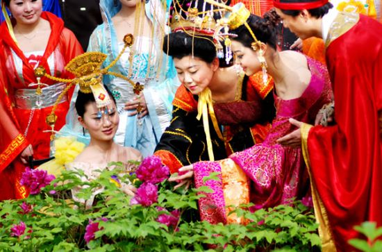 U142P5029T2D578342F28DT20130404103314 Luoyang Peony Festival เทศกาลดอกโบตั๋น