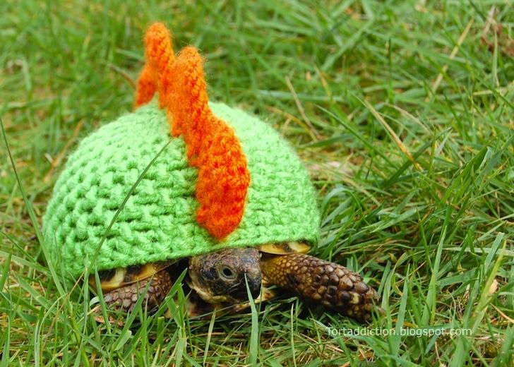tortoise cozie mohawk ถ้กเสื้อไหมพรมให้เต่าน้อย