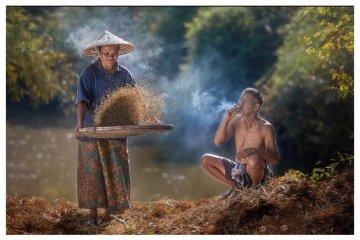ภาพความสุขในวิถีชีวิตแบบไทยๆโดย Sangkhom Hungkhunthod 20 - ภาพชนบทไทย