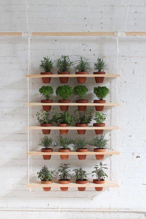 20140510 121658 DIY สวนผักแนวตั้งจากไม้ กระถาง และเชือก