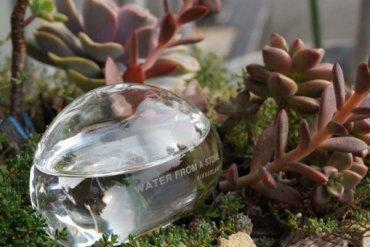 ให้น้ำต้นไม้แบบประหยัดน้ำ..จากก้อนน้ำใสๆ..แนวZen.. 17 - ปลูกต้นไม้