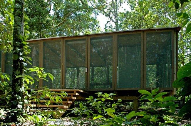บ้านในป่าร้อนชื้น โปร่งโล่ง กันแมลงแต่ไม่กั้นลม แสงสว่าง และธรรมชาติ 13 - คอนกรีต