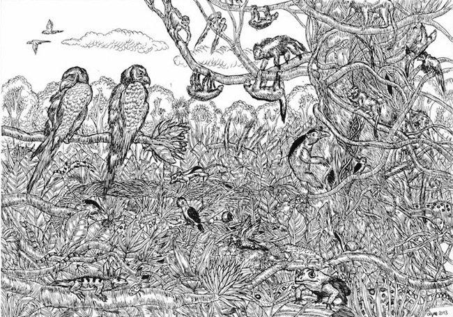 25570509 080602 ศิลปินเด็กอายุ11ปี สร้างผลงานชีวิตสัตว์ที่เต็มไปด้วยรายละเอียด