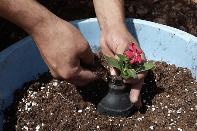 20140602 212041 76841220 ชาวปาเลสไตน์ในเขต West Bank สร้างสวนที่เป็นอนุสรณ์จากปลอกกระสุนแก๊สน้ำตา