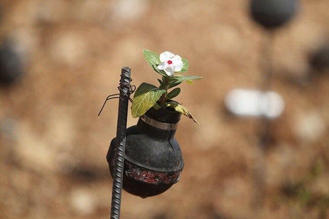 20140602 212041 76841551 ชาวปาเลสไตน์ในเขต West Bank สร้างสวนที่เป็นอนุสรณ์จากปลอกกระสุนแก๊สน้ำตา