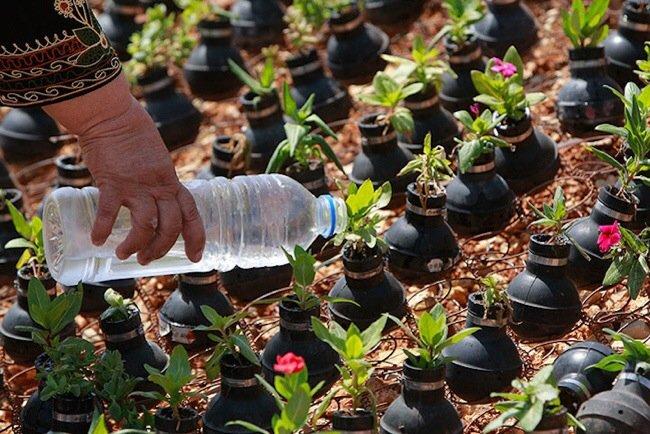 20140602 212041 76841619 ชาวปาเลสไตน์ในเขต West Bank สร้างสวนที่เป็นอนุสรณ์จากปลอกกระสุนแก๊สน้ำตา