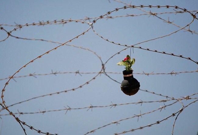 20140602 212041 76841692 ชาวปาเลสไตน์ในเขต West Bank สร้างสวนที่เป็นอนุสรณ์จากปลอกกระสุนแก๊สน้ำตา