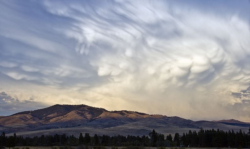 800px Mammatus clouds Montana MT1 Mammatus Clouds หนึ่งในเมฆที่สวย มาพร้อมกับพายุที่รุนแรง
