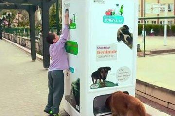 หยอดขวดพลาสติกใช้แล้วในตู้ Vending Machine ให้อาหารและน้ำกับสุนัขจรจัด 12 - รีไซเคิล