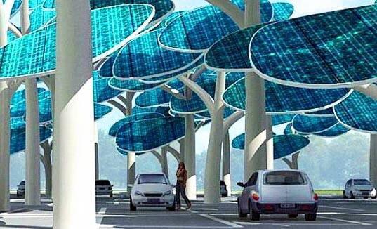 IMG 4331 ป่าผลิตพลังงานแสงอาทิตย์ ..และที่จอดรถ