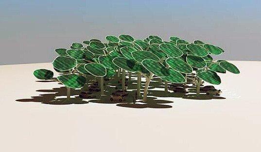 IMG 4333 ป่าผลิตพลังงานแสงอาทิตย์ ..และที่จอดรถ