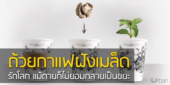 ถ้วยกาแฟรักโลก รีไซเคิลขยะเป็นกระถางต้นไม้จากเมล็ดพืชฝังอยู่ 17 - รียูส