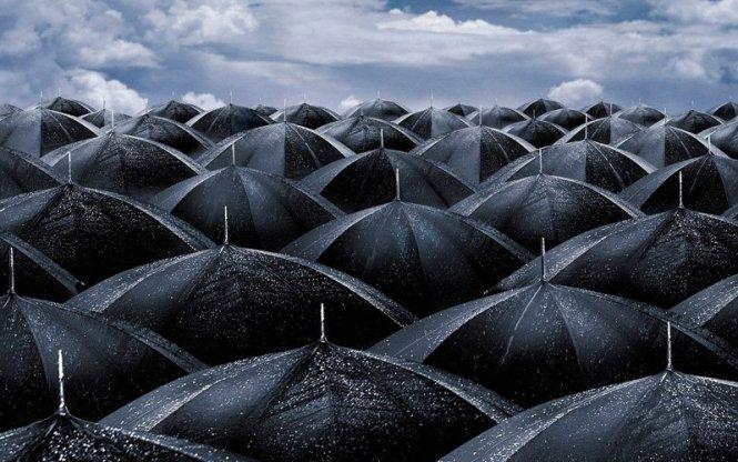 world-of-umbrellas