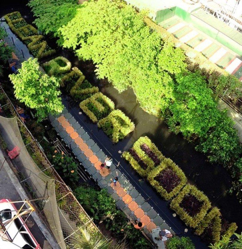 HANA-grass-billboard