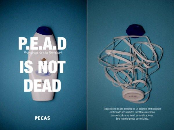 IMG 5111 P.E.A.D. IS NOT DEAD ทดลองทำแจกันจากภาชนะพลาสติกใช้แล้ว
