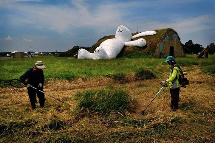 IMG 5256 กระต่ายยักษ์สีขาวขนาด 82ฟุต นอนชมจันทร์บนโรงเก็บเครื่องบินเก่า