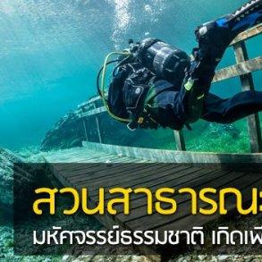 สวนสาธารณะใต้น้ำ มหัศจรรย์ธรรมชาติสุดงดงามที่เกิดเพียงปีละครั้ง 14 - flood