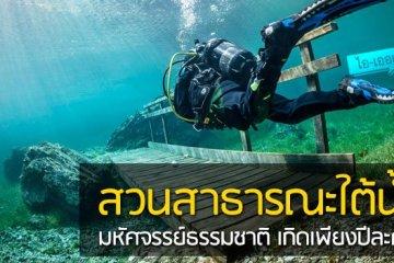 สวนสาธารณะใต้น้ำ มหัศจรรย์ธรรมชาติสุดงดงามที่เกิดเพียงปีละครั้ง