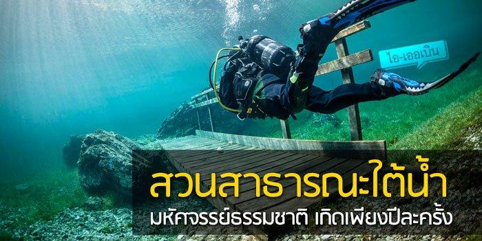 สวนสาธารณะใต้น้ำ มหัศจรรย์ธรรมชาติสุดงดงามที่เกิดเพียงปีละครั้ง 20 - GREENERY