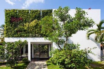 เปลี่ยนบ้านเก่าเป็นบ้านสมัยใหม่ ด้วยผนังมีชีวิต 4 - living wall