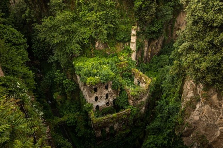 ธรรมชาติคือผู้ชนะ กลืนกินทุกสิ่ง Nature Winning Against Civilization 17 - GREENERY