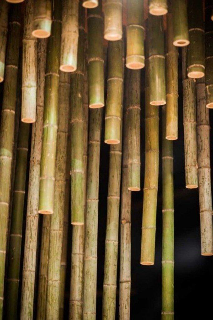 Bamboo 04 จิตสันติและสงบในห้องดื่มน้ำชา อารมณ์ไผ่และดอกบัวไม้