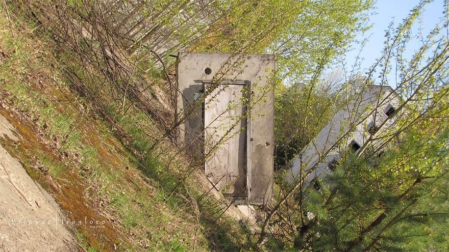 IMG 7039 เชอร์โนบิล! เมืองร้างในวันนี้ 28 ปีหลังนิวเคลียร์ระเบิด สุดท้ายธรรมชาติคือผู้ชนะ