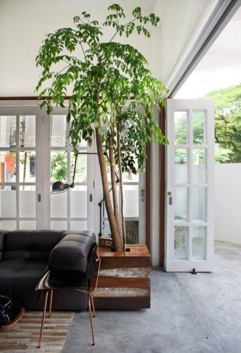 IMG 7435 ปรับปรุงทาวน์เฮาส์เก่า 60ปี เป็นบ้านสมัยใหม่ พื้นคอนกรีต สว่าง โปร่ง โล่ง