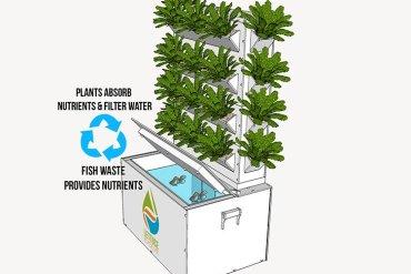 ชุดปลูกผักเลี้ยงปลา สำหรับคนอยู่ในเมือง 14 - vertical garden