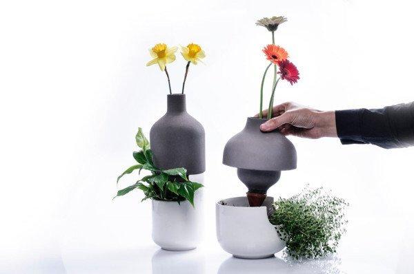 IMG 8952 เมื่อกระถางประหยัดน้ำ อยู่ร่วมกับแจกันดอกไม้ เกื้อกูลกันและกัน ..อย่างงดงาม