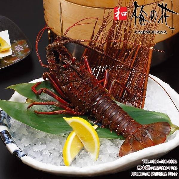 IMG 9083 ฉลองปีใหม่แบบญี่ปุ่น ด้วยกุ้งมังกรอิเสะเอบิ สัญลักษณ์แห่งความมีสุขภาพแข็งแรง อายุยืนยาว