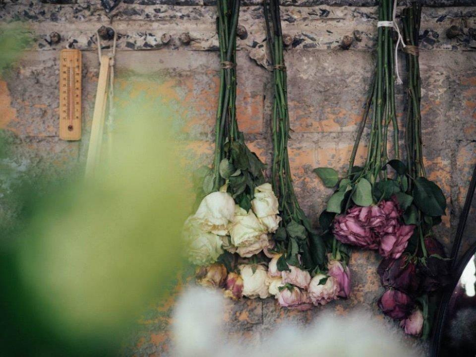 10310101 800159456674390 7049109622116488864 n Wallflowers เป็นดอกไม้ช่อใหญ่ เก็บเอามาไว้ให้เธอ