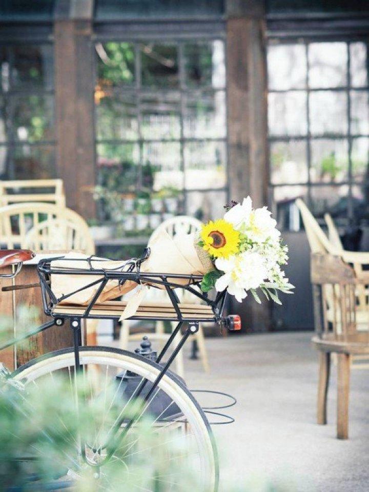 10354741 803619722995030 3906474947470131751 n Wallflowers เป็นดอกไม้ช่อใหญ่ เก็บเอามาไว้ให้เธอ