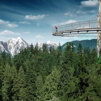 Vancouver's Capilano Suspension Bridge Park กิจกรรมสำรวจธรรมชาติและชมวิวจากบนยอดต้นไม้ 13 - Rainforest