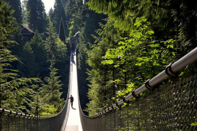 Gallery-Capilano-Suspension-Bridge
