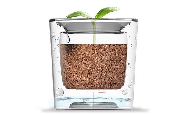 กระถางประหยัดน้ำ รีไซเคิลน้ำทุกหยด 13 - Flower pot