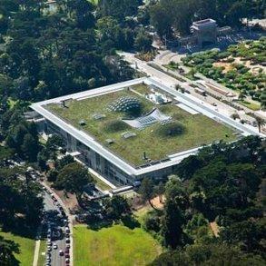 ฝรั่งเศสออกกฎหมายใหม่ ให้ทุกอาคารมีหลังคาสีเขียว ปลูกต้นไม้ ลดโลกร้อน 16 - energy