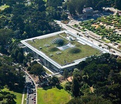 ฝรั่งเศสออกกฎหมายใหม่ ให้ทุกอาคารมีหลังคาสีเขียว ปลูกต้นไม้ ลดโลกร้อน 15 - energy
