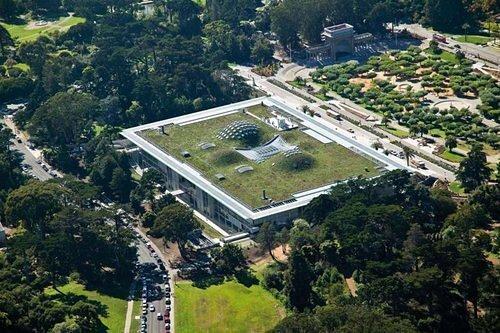 ฝรั่งเศสออกกฎหมายใหม่ ให้ทุกอาคารมีหลังคาสีเขียว ปลูกต้นไม้ ลดโลกร้อน 29 - GREENERY